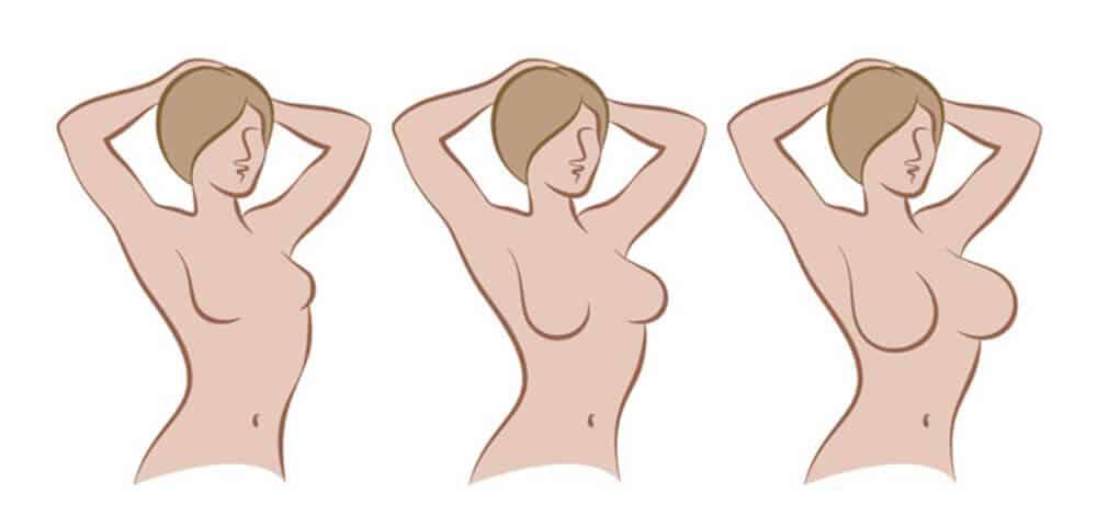 وضح نافذة او شباك فجر علاج ضمور الثدي عند النساء Virelaine Org